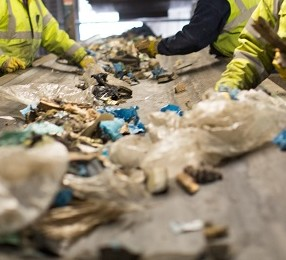 Wheeldons staff picking waste on the picking line